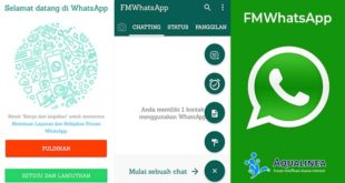 Download FMWhatsApp APK Versi Terbaru 7.90 (Official) 2019